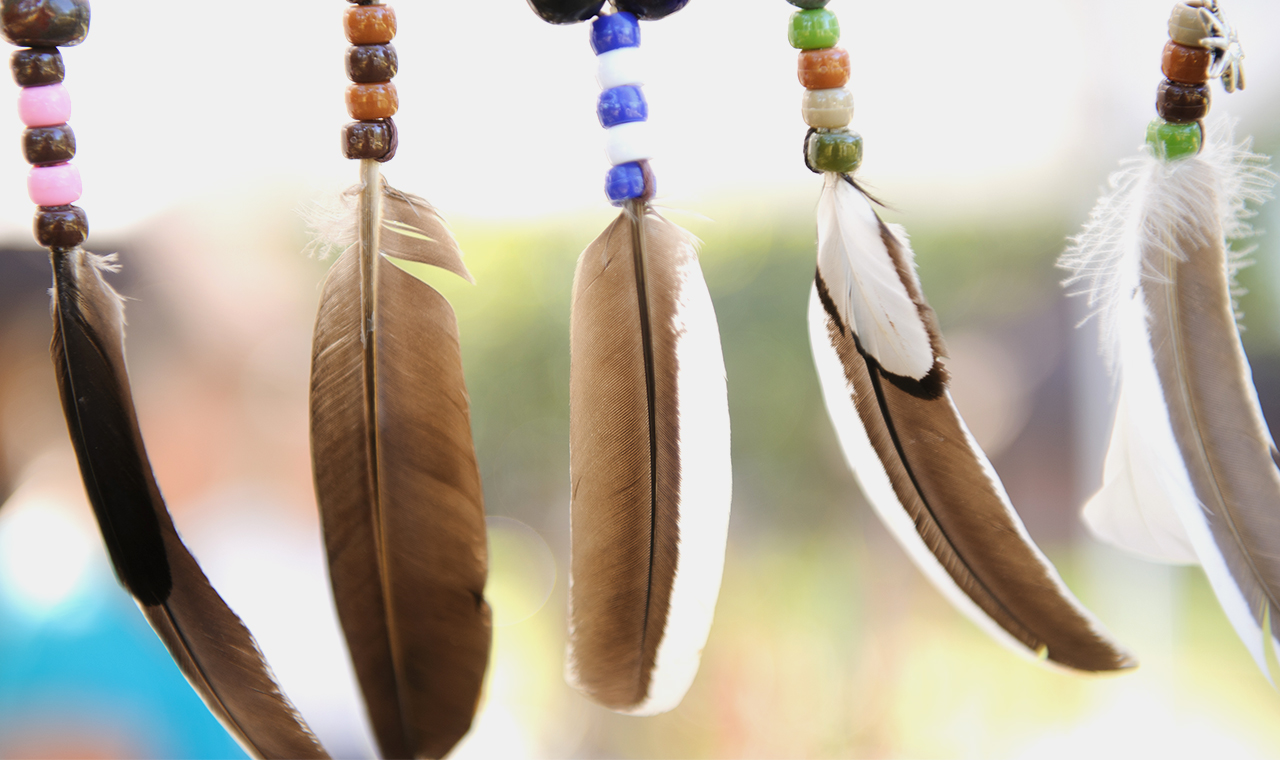 decorative feathers hanging in a row